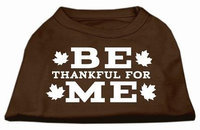 Ahi Be Thankful for Me Screen Print Shirt Brown XL (16)