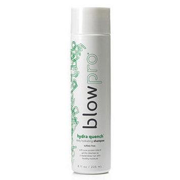 BlowPro hydra quench - daily hydrating shampoo, 8 oz