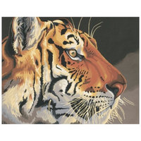 Dimensions Paint by Number Kit - Regal Tiger (20x16