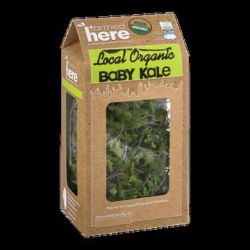 FarmedHere Local Organic Baby Kale