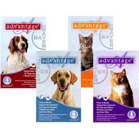 Advantage - For Dogs And Puppies 21-55 Lb