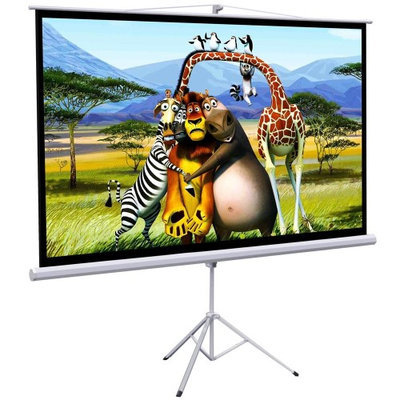 Onebigoutlet 100 Tripod Portable Projector Projection HD Screen Foldable Stand, 87x49, 16:9