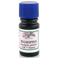 Tiferet-avraham Aromatherapy Tiferet - Blue Glass Aromatic Pro-Organic Oil, Eucalyptus Globulus, 5 ml