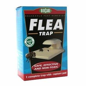 SpringStar Flea Trap