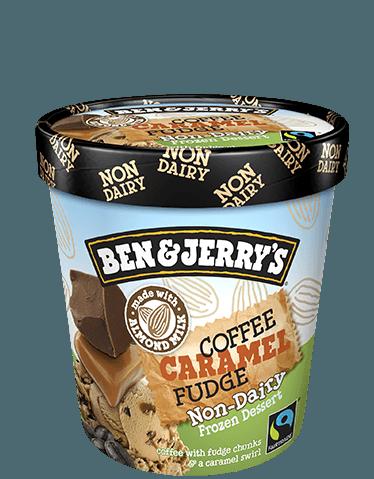 Ben & Jerry's® Coffee Caramel Fudge Non-Dairy Frozen Dessert