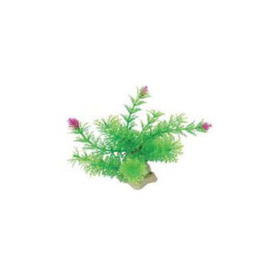 Pure Aquatic Natural Elements Ambulia Aquarium Ornament in Green
