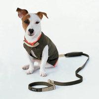 Wagwear Rain Vest