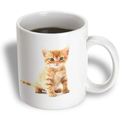 Recaro North 3dRose - Florene Cat - Cute Orange Tabby Kitten - 11 oz mug