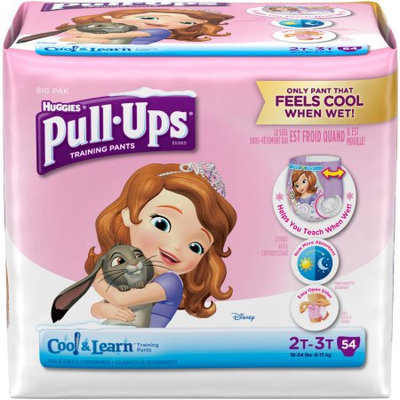 Kimberly-clark HUGGIES Pull-Ups Girls' Cool & Learn Training Pants, Big Pak, (Choose Your Size)