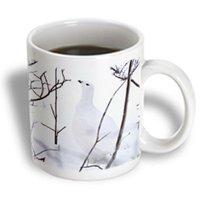 Recaro North 3dRose - Danita Delimont - Birds - Canada, Manitoba, Churchill. Willow Ptarmigan-CN03 RJA0010 - Rebecca Jackrel - 15 oz mug