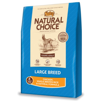 Nutro Natural Choice NUTROA NATURAL CHOICEA Wholesome Essentials Large Breed Young Adult Dog Food