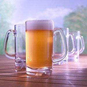 Indoor/outdoor Wine Glasses Indoor/Outdoor Beer Mug (Set of 4)