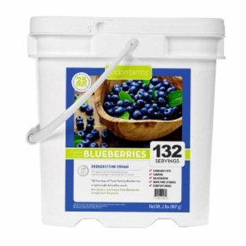 Lindon Farms Freeze Dried Blueberries, 132 Servings, 1 ea