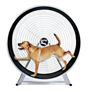 GoPet CS6018 GoPet TreadWheel For Large Dogs
