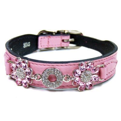 Hartman & Rose Fresh as a Daisy Dog Collar