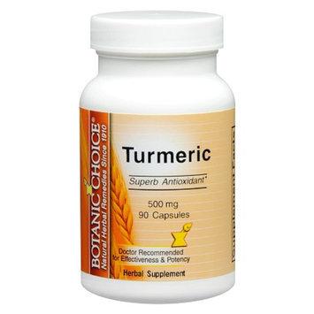 Botanic Choice Turmeric 500 mg Herbal Supplement Capsules