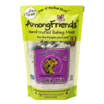 Among Friends Cookie Mix, Phil Em Up Chocolate Cranberry, 14 oz