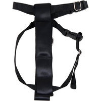 Petmate, Inc Seat Belt Travel Harness For Dogs Color: Black. Size: Medium.
