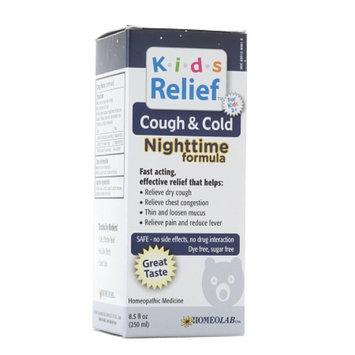 Homeolab USA Kids Relief Cough & Cold Nighttime Formula