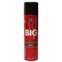 Salon Grafix Play It Big Dry Shampoo, Brown Hair