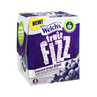 Welch's® Fruit Fizz Concord Grape Blast Flavored Sparkling Juice Beverage