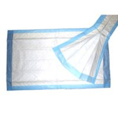 Griffin Medical Products UNDERPADS (6X50) 3801 Size: 17X24