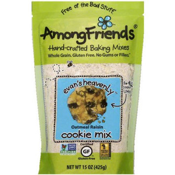 Among Friends Evan's Heavenly Oatmeal Raisin Cookie Mix, 15 oz, (Pack of 6)