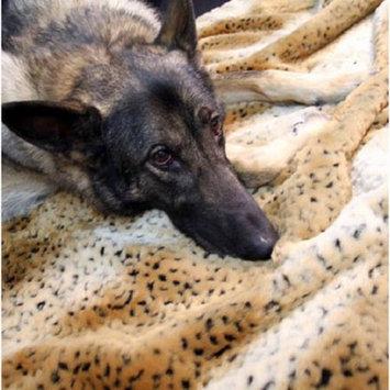 Favorite Pet Products T42 OCL Tiger Dreamz Bed Lg Ocelot