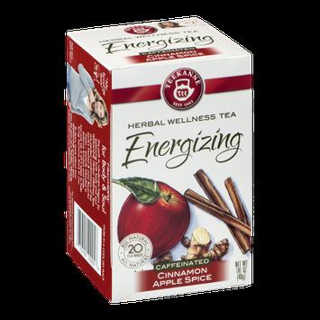 Teekanne Herbal Wellness Tea Energizing Cinnamon Apple Spice -  20 CT