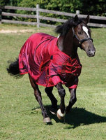 Shires Equestrian Shires Stormcheeta 2000D T/O Blanket 200g 72 Red