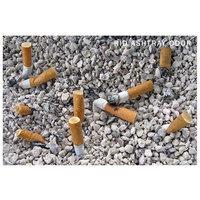 IMTEK Environmental 30002 Smelleze Eco Ashtray Smell Removal Granules - 2 lb