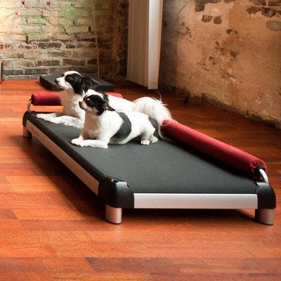 Doggysnooze Dutch Dog Dog Lounge