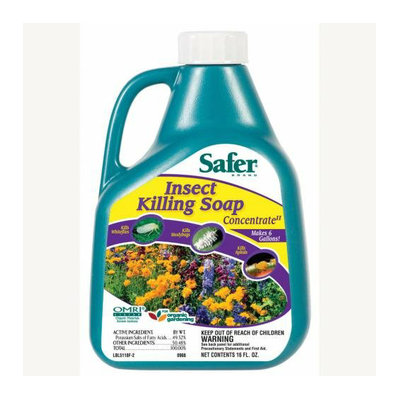 Woodstream Safer 16oz Flower &amp