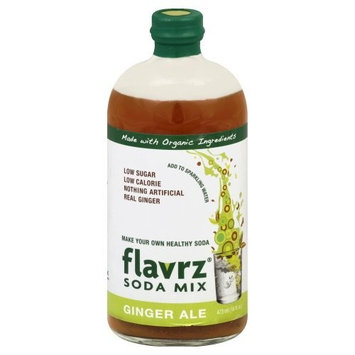Flavrz Soda Mix Concentrate, Ginger Ale