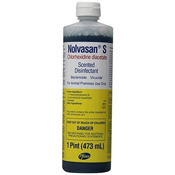Pfizer Nolvasan S Disinfectant 1 Pint (473mL)
