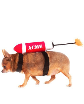 Rubies Costume Co Acme Dynamite Pet Accessory