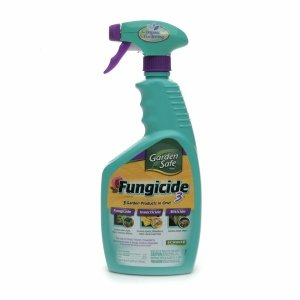 Raid Earth Options Ant Roach Unscented Reviews Find The Best Pest Control Influenster