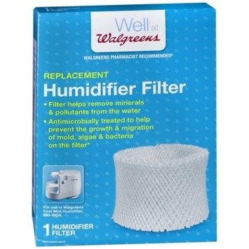 Walgreens Cool Moisture Humidifier Filter W889-WGN