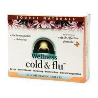 Source Naturals Wellness Cold & Flu