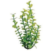 Tetra Usa ATS19106 Water Wonders Bacopa Aquarium Plant, 6-Inch, Green