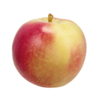 Apples McIntosh