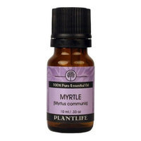 Plantlife Myrtle Essential Oil (100% Pure and Natural, Therapeutic Grade) 10 ml