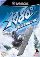NST 1080: Avalanche
