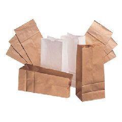 Duro Paper Bag Manufacturing, Company Paper Bags & Sacks BAG GW20-500 20 Bleached Tall Paper Bag 500-Bundle