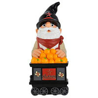 Team Bean Thematic Gnome Houston Astros
