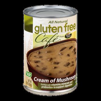 Gluten Free Cafe Soup Cream of Mushroom