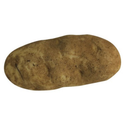 Potandon Produce LLC Russet Potato per LB