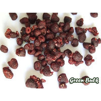 Superior Nut Company Dried Red Raspberries (1 Pound Bag)