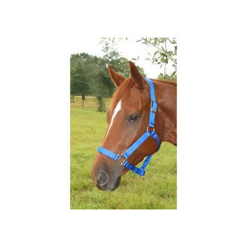Hamilton Halter Company Hamilton 1-Inch Nylon Adjustable Quality Halter with Chin Snap for 500 to 800-Pound Horse, Small, Dark Green