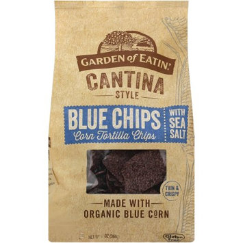 Garden Of Eatin CHIPS, OG3, BLUE, CANTINA, (Pack of 10)